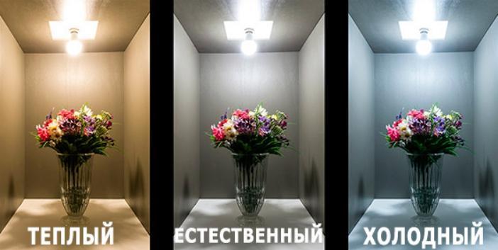 Что выбрать – теплый белый свет или холодный