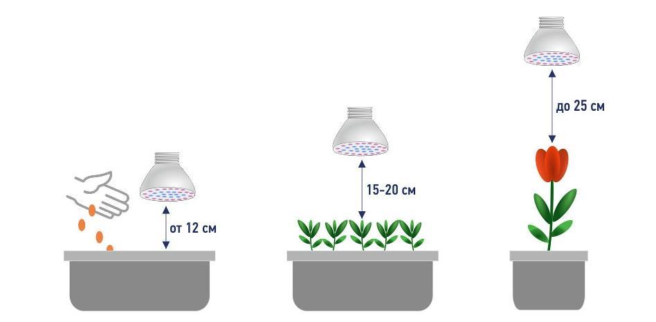 подсказки при определении высоты светильников